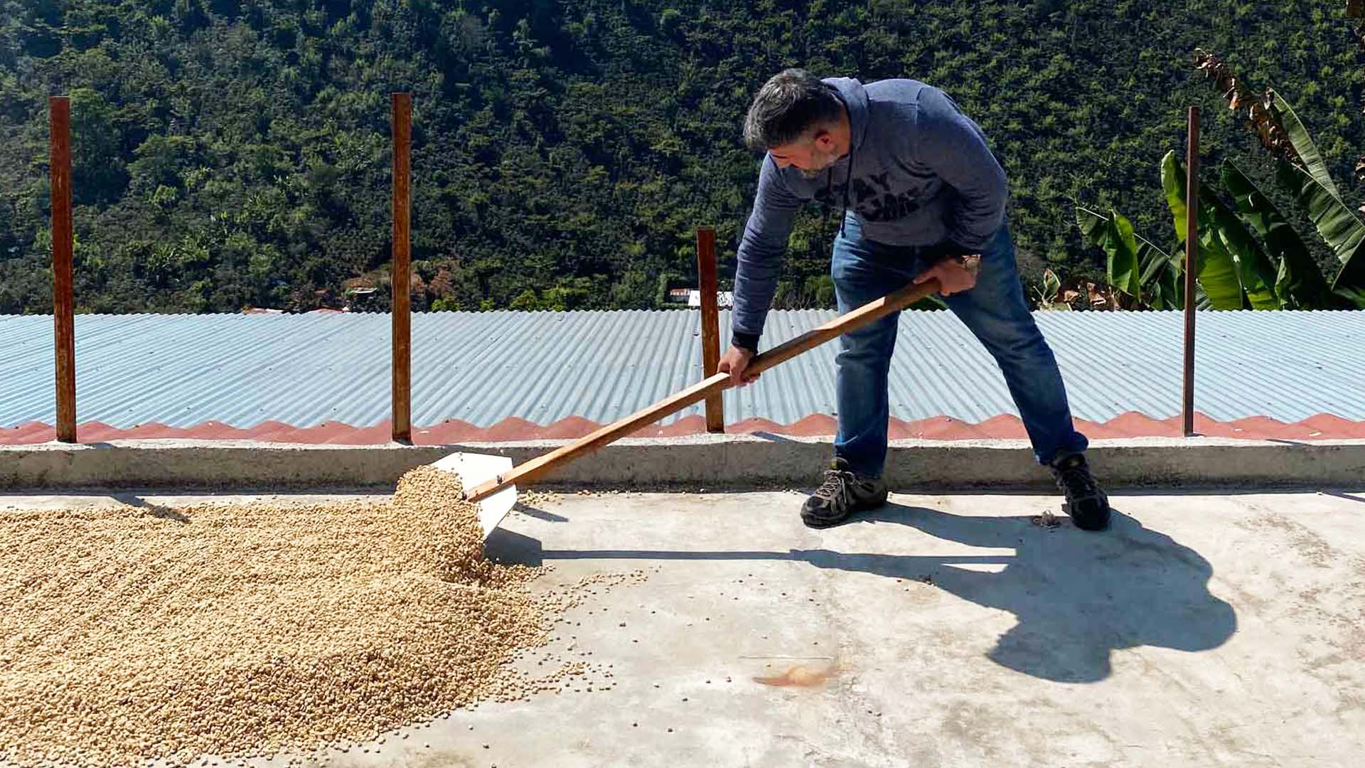 Visit to Coffee Farms in Guatemala